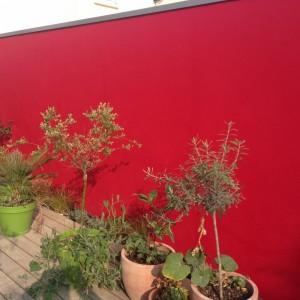Interext-amenagement-exterieur-jardiniere2-1